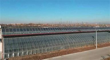 包头农科院温室项目