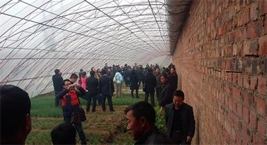 内蒙古农业大学农学院新型温室
