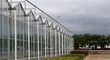 阿拉善大漠绿苑智能温室建设项目