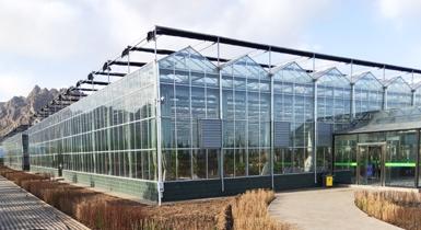 中国敕勒川现代农业产业园30000平米智能连栋玻璃温室