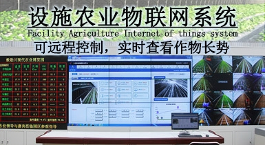 设施农业物联网系统